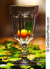 Citrus calamondin in a large glass goblet
