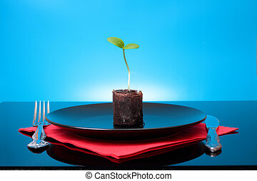 One green fresh sprout on the black plate