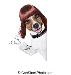 hairdresser dog behind a white and blank placard