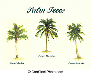 Palm Trees - Watercolor Painting of a Collage of palm Trees