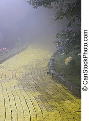 Yellow brick road winding through the forest at Beech...