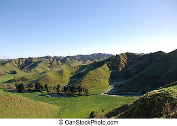 New zealand hills - New zealand green hills in country