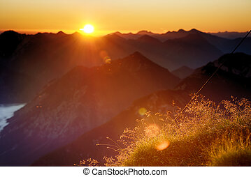 back light of sunset in mountains with warm lighted grass