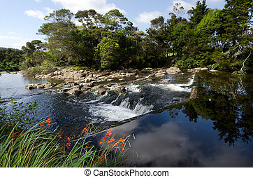 KeriKeri - New Zealand - Kerikeri waterfalls nature reseve...