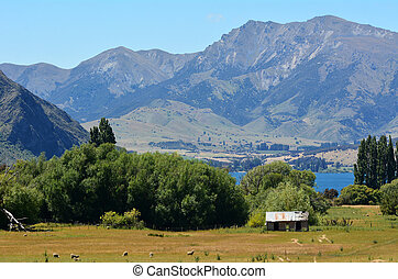 Wanaka - New Zealand - An old sheep station on Wanaka lake...