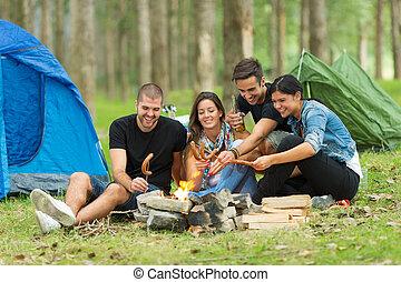 amigos, campamento