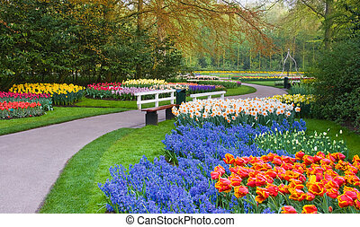 Many spring flowers in many colors on an early april day in...