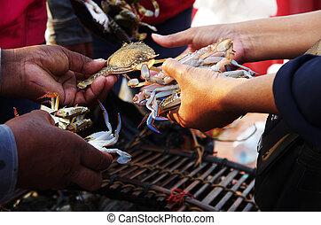 caranguejos, fresco,  close-up, vendido, mercado