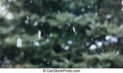 Snow snowflakes - Fluffy snowflakes falling