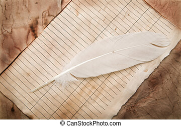 old paper with a feather as a background