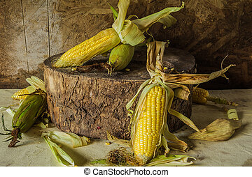 Still life with corn placed on the timber