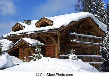 Nice chalet 2 - Typical luxurious chalet in a French ski...