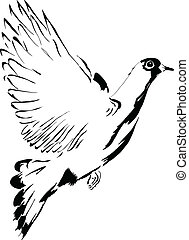 Flying dove cartoon drawing made ??by hand. Vector...