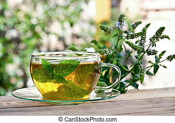 tea with peppermint - cup of tea with peppermint in the...