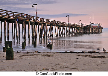Seagulls at Sunset - Seagulls at sunset by a pier near...