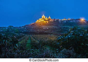 Saint Pauls Cathedral in Mdina, Malta - Saint Pauls...