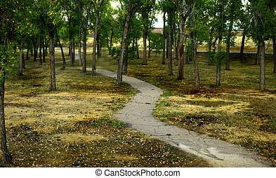 Meandering Path - A Meandering path in the park