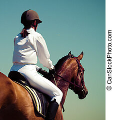 Horse and jockey - Horse and jockey girl sits on a beautiful...