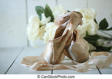 Posed Pointe Shoes in Natural Light - Romantic Posed Pointe...