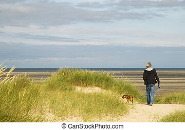 Walking the dog near the beach - Senior man is walking his...