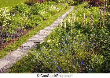Wildflower garden and path