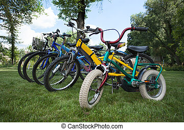 Five bicycles in different sizes in one line