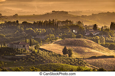 Tuscany Village landscape Scene - Cypress on the Hills of...