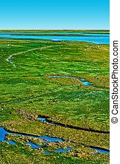 Swamp on the Shore of Atlantic Ocean in Portugal as a Result...