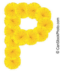 Letter P made from dandelions Yellow Letter P