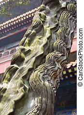 Gnarly Juniper - An ancient Juniper tree in the Confucius...