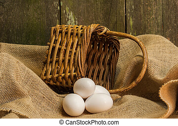 eggs for home cooking and baking