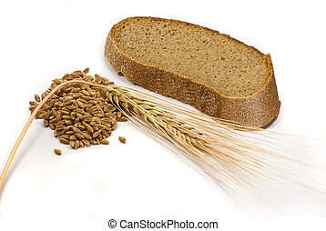 Barley grains, ear and piece of bread isolated on the white...