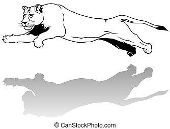 Lioness - black outline illustration