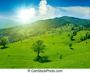 Fantastic green meadow in mountain