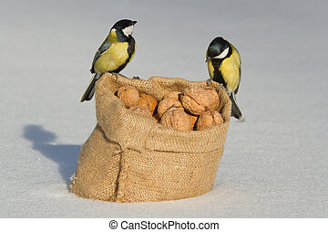 Two birds titmouse sitting on a bag of nuts