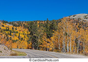 NV-Great Basin National Park - Autumn colors abound in Great...