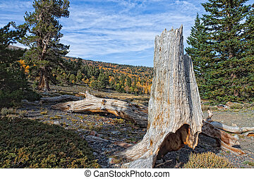 NV-Great Basin National Park - Great Basin National Park is...