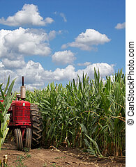 Heart Of America - Red tractor in a cornfield.