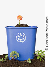 Flower iN Recycling Bin