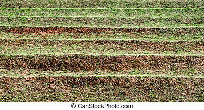 Layer of soil for agriculture