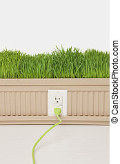Green Plugged In - Green Grass growing from planter box with...
