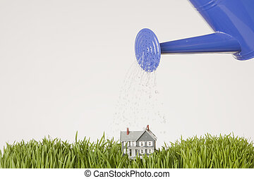 Home Growth - Blue Watering can watering model home on green...