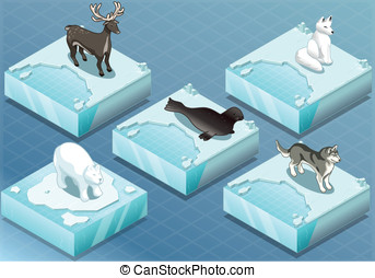 Isometric Arctic Animals on Ice - Detailed Illustration of a...