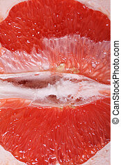 Texture of red grapefruit pulp macro vertical