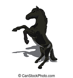 Rearing horse fine vector silhouette - black over white