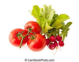 tomatoes, lettuce, radish on a white background