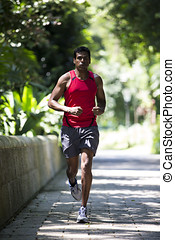 Athletic Indian man running in park Asian Runner jogging...