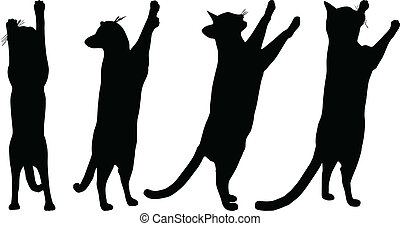 Cats collection - vector silhouette - EPS 10 vector...