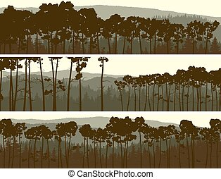 Banners of coniferous pinewood. - Horizontal abstract...