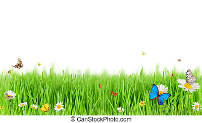 Spring meadow - Easter spring meadow with butterflies,...